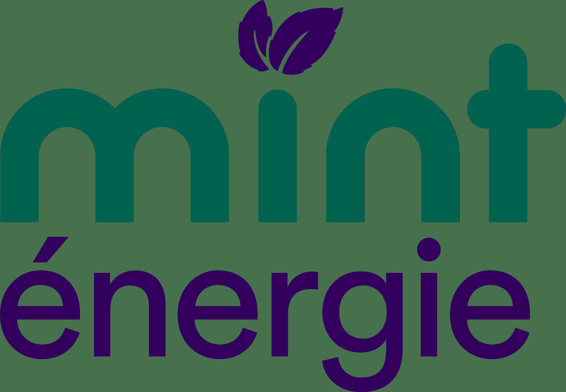 mint energie logo