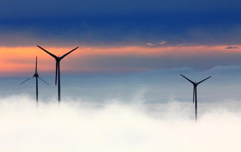 Sainsbury's renewable energy