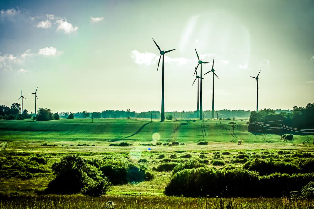 Opus Business energy